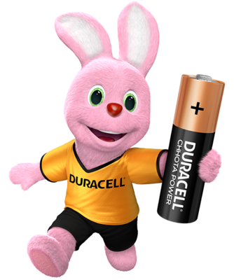 Duracell Chhota Power AA, 1 Batteries, 1.5V Alkaline