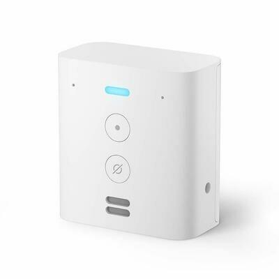 Amazon Echo Flex, Plug-in Echo