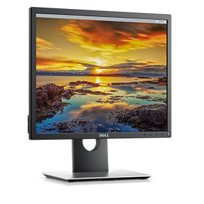 "Dell 19"" inches Led Monitor, P1917S"