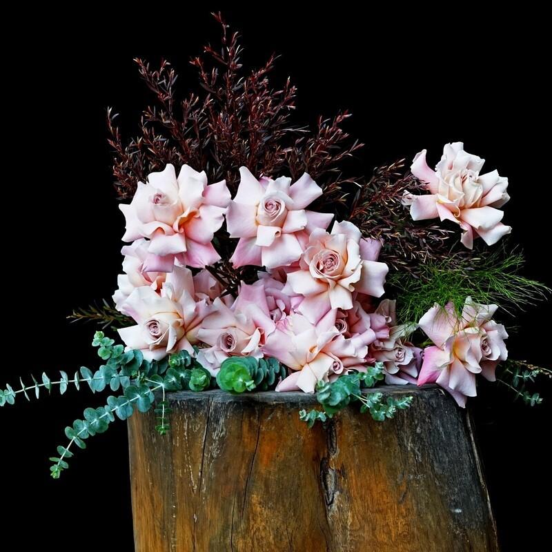Eveleigh roses,