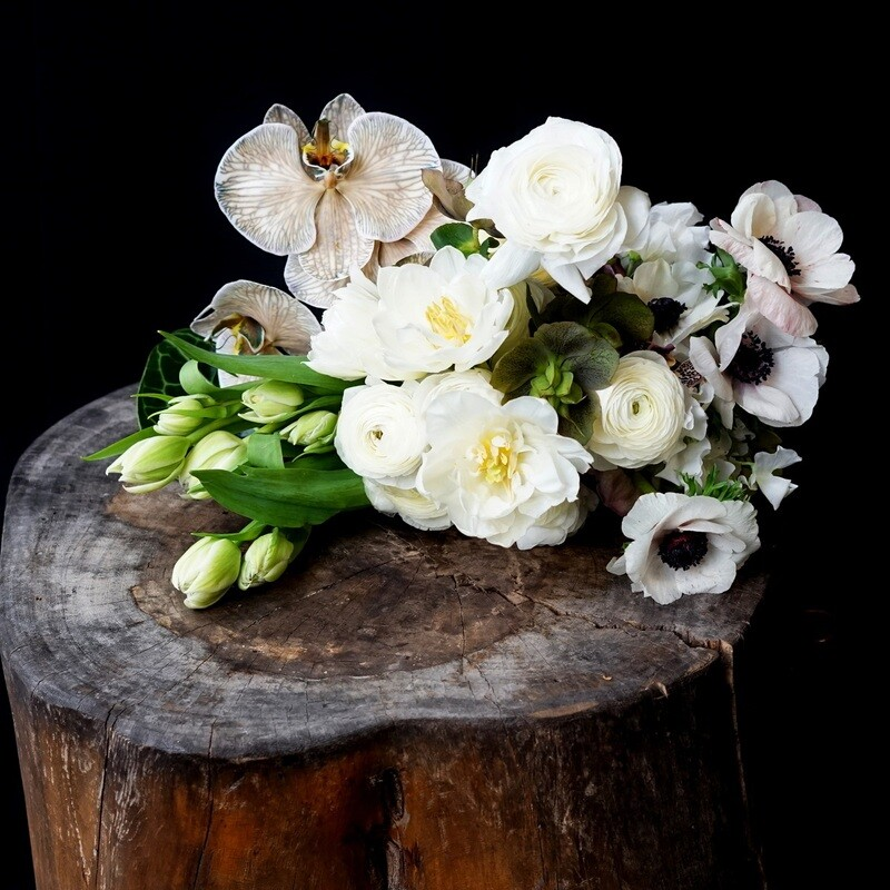 Paddington flowers
