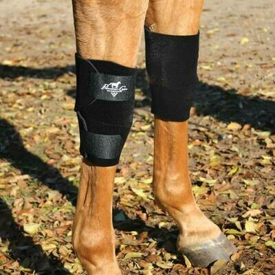 Equine Knee Boots Professional Choice