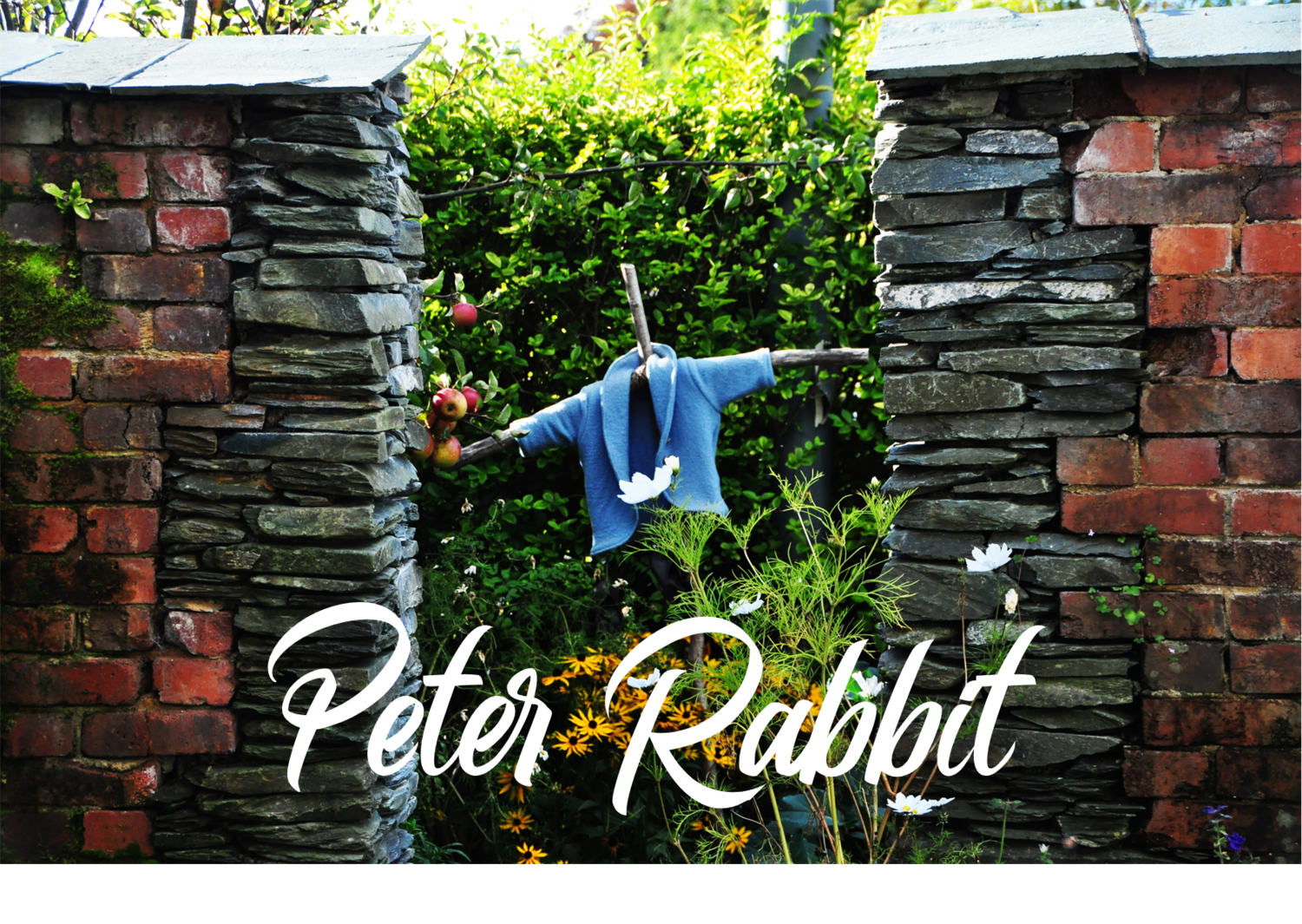 The Tale of Peter Rabbit - 3D Audiobook (English Version)