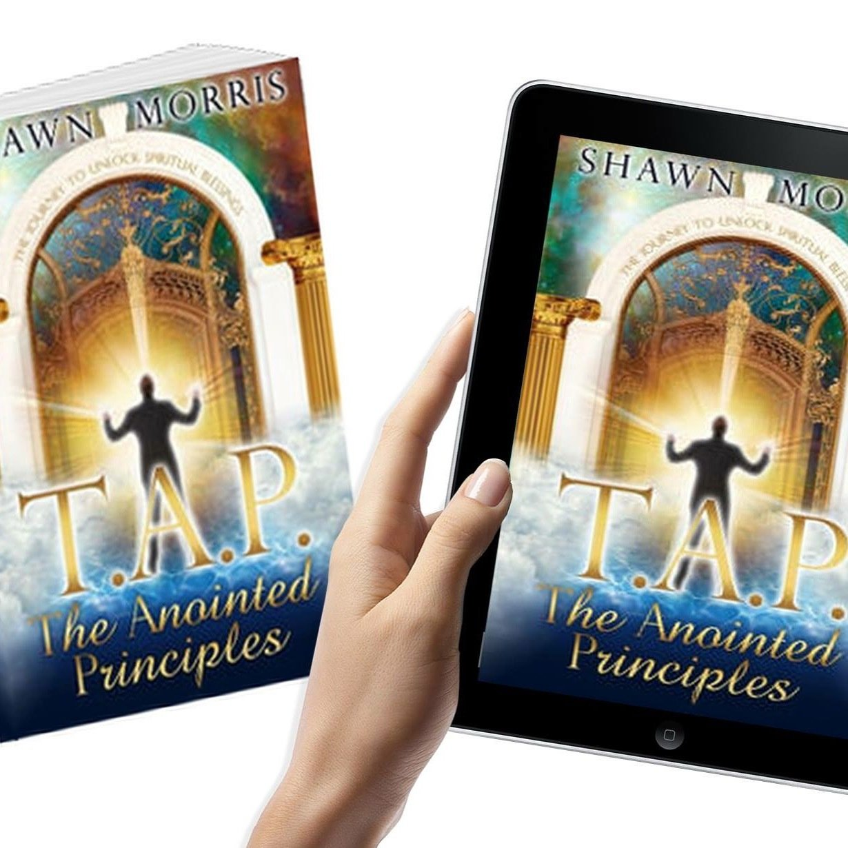T.A.P. The Anointed Principles