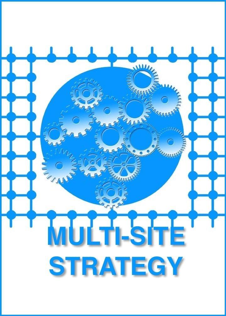 MULTI-SITE STRATEGY CONSULTATION