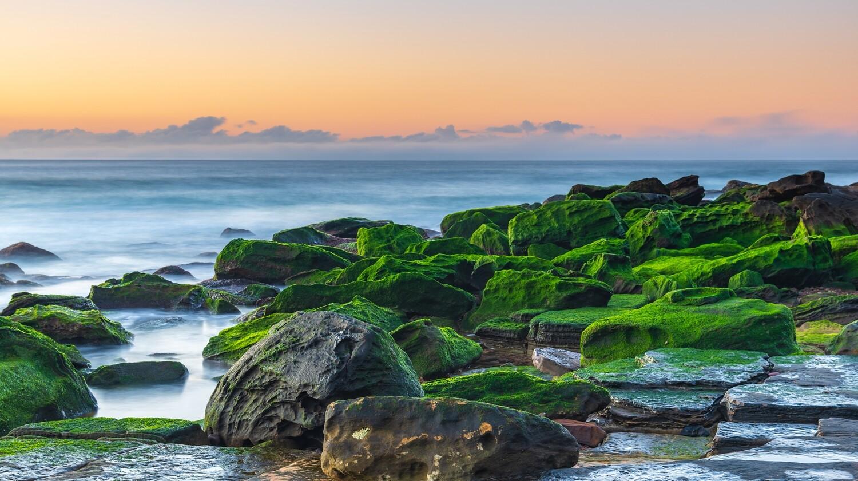 EZ Background (Seascape Rocks)