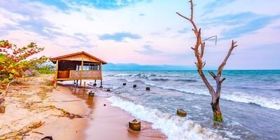 Lake Tanganyika Shore