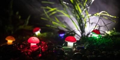 Glowing Red Mushrooms
