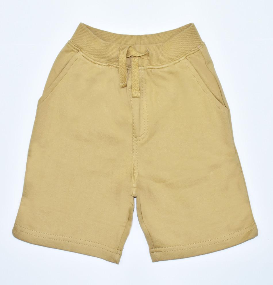 PLANET COTTON - Short básico khaki