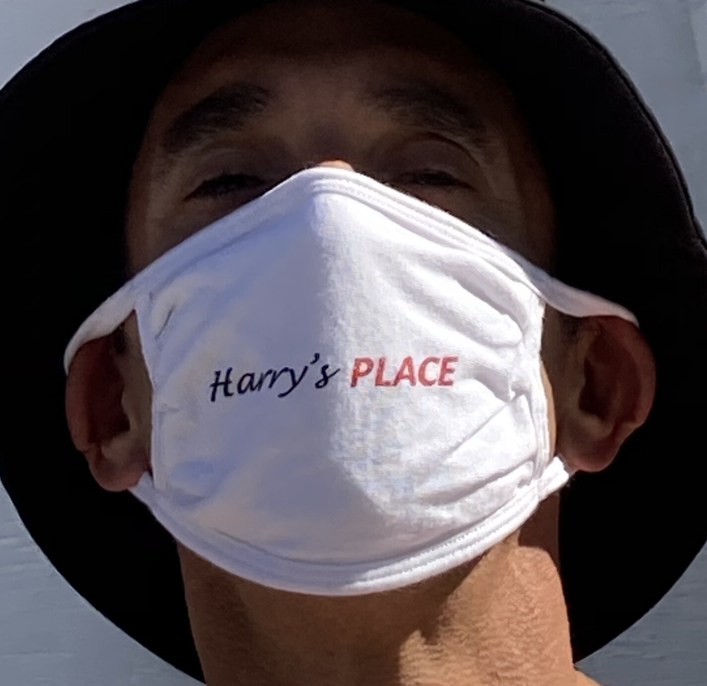 Harrys Place Logo Masks