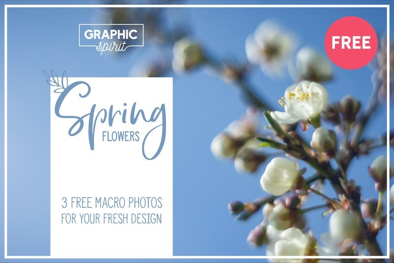 Free Spring Flowers Banner Backgrounds