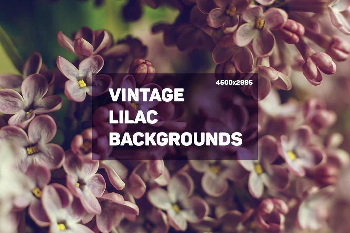 20 Vintage Lilac Backgrounds