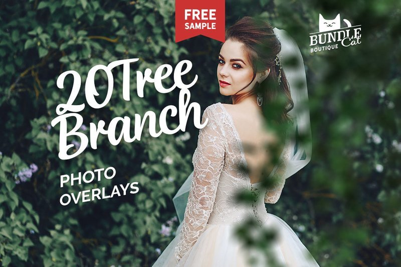 20 Green Tree Branch Photo Overlays