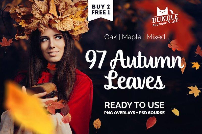 97 Autumn Leaves Photo Overlays