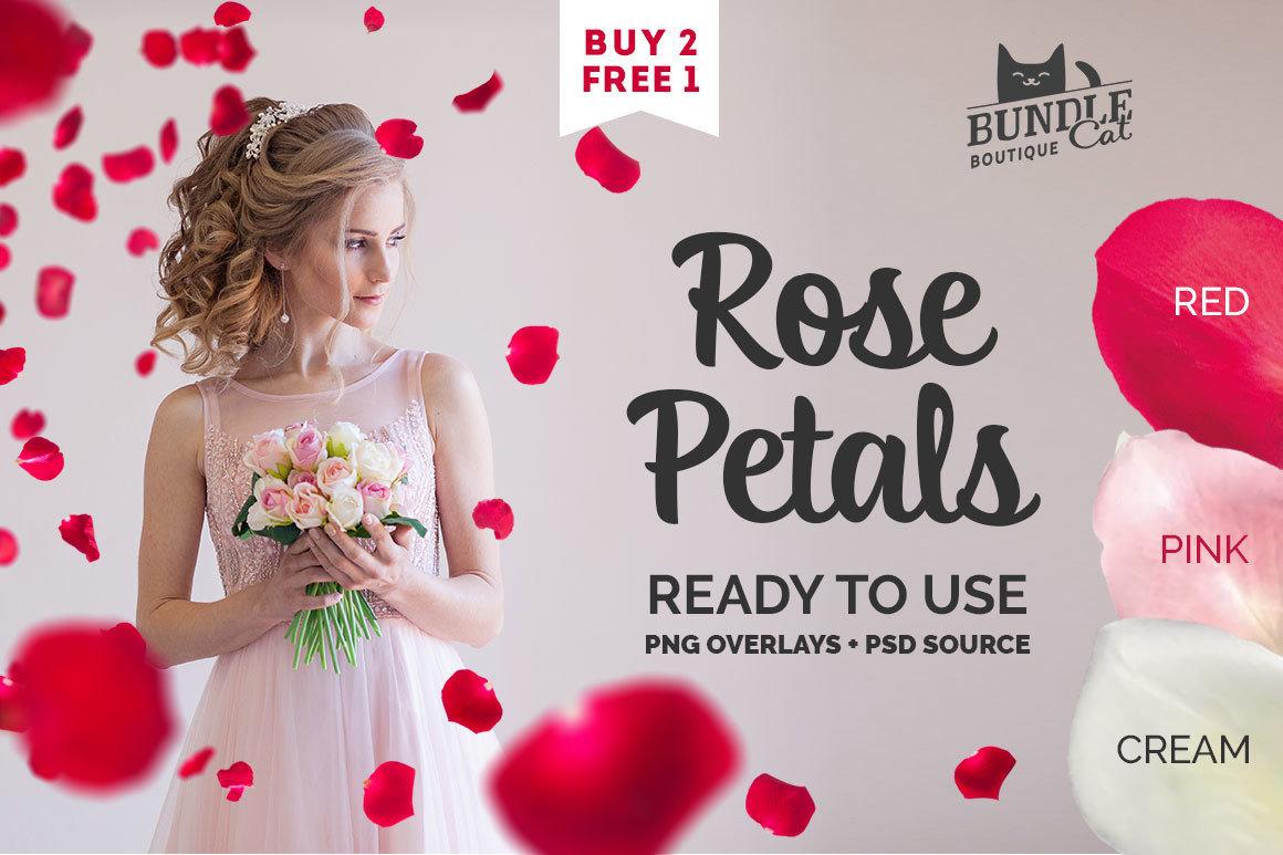 21+ Rose Petal Photoshop Overlays