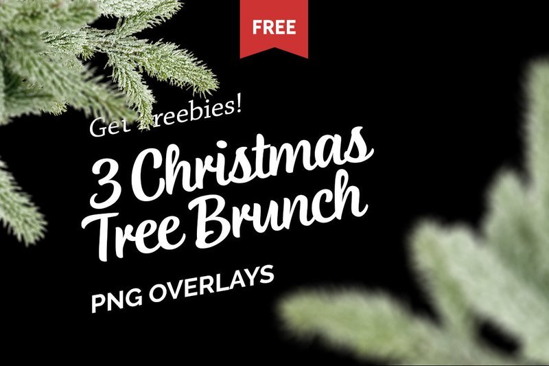 Free Christmas Tree Brunch Overlays