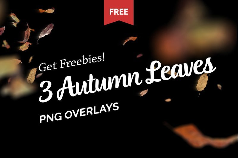 Free Autumn Leaves Photo Overlays