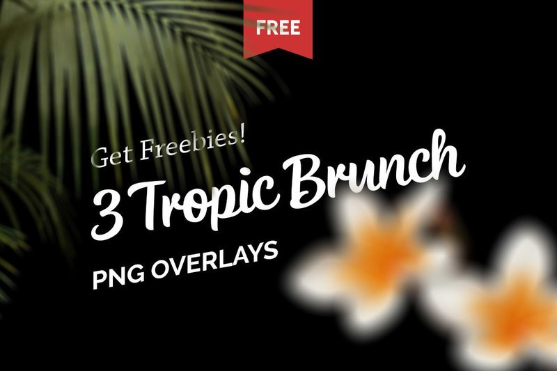 Free Tropic Brunch Overlays