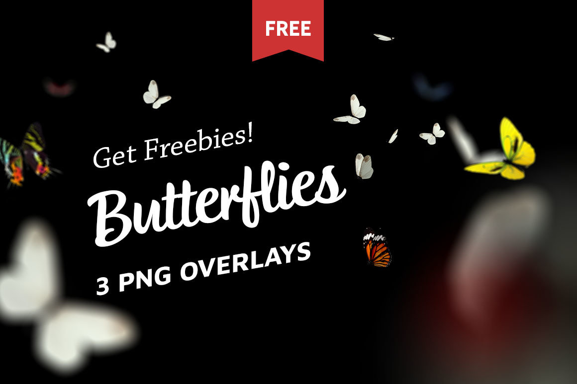 Free Butterfly Photo Overlays