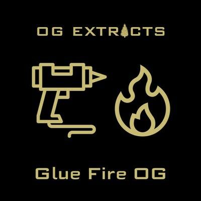 Glue Fire OG Shatter
