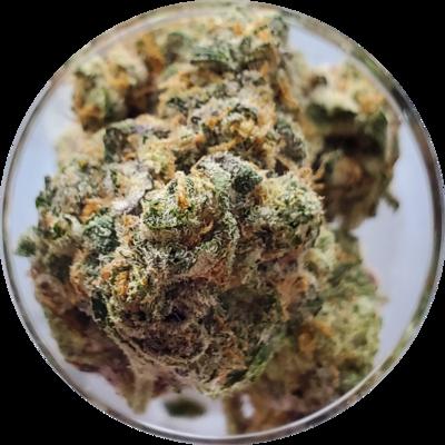 AAAA+ Fortune Cookies (organic)