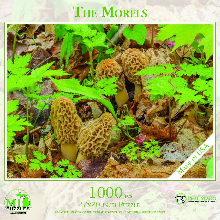 The Morels Puzzle