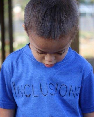 Inclusion 321