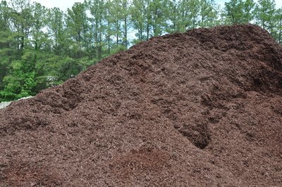 Walnut DESIGNER Mulch