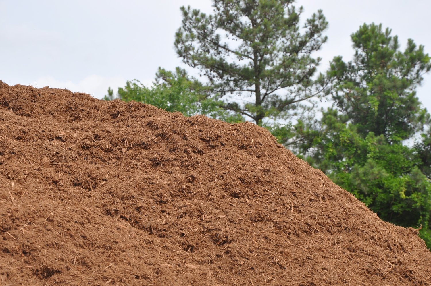 Triple Shredded HARDWOOD Bark Mulch (Color Varies Based on Age of Bark)
