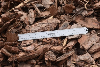 Large Pine Bark Nuggets (Will vary in size from the Mill)