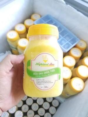 Sữa ong chúa hũ 500g (tiết kiệm 100.000đ)