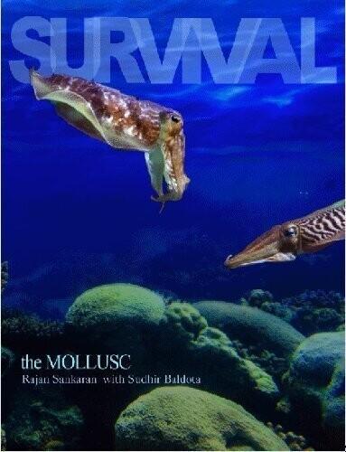 Survival: The mollusc*