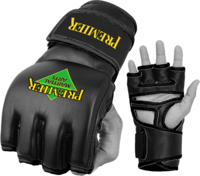Solo Basic MMA Gloves