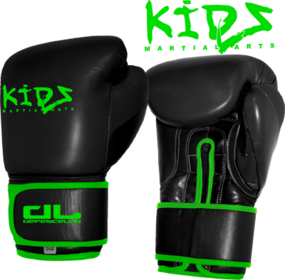 DL KIDS Boxing Gloves (CLEARANCE)