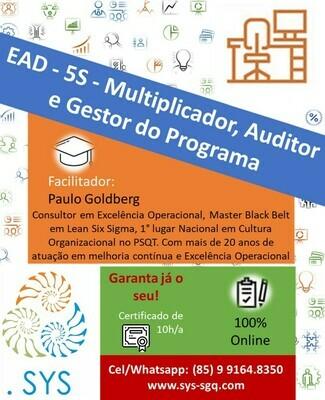 EAD - 5S - Multiplicador, Auditor e Gestor do Programa