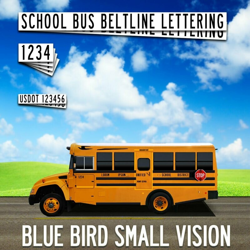 Blue Bird Small Vision Lettering