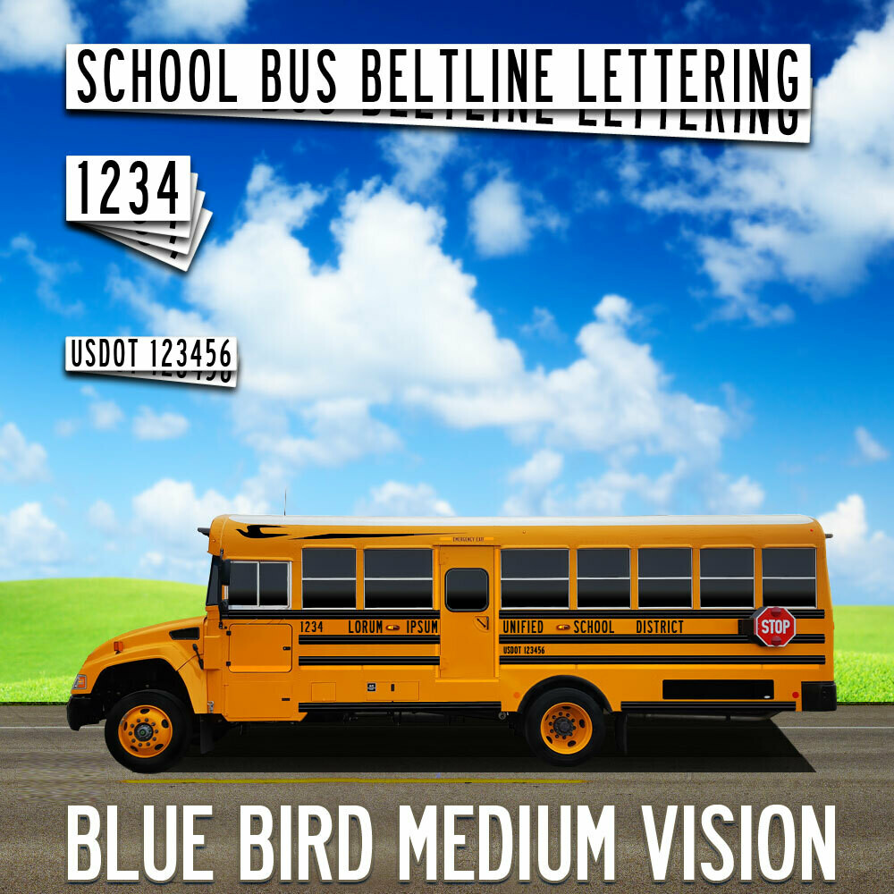 Blue Bird Medium Vision Lettering
