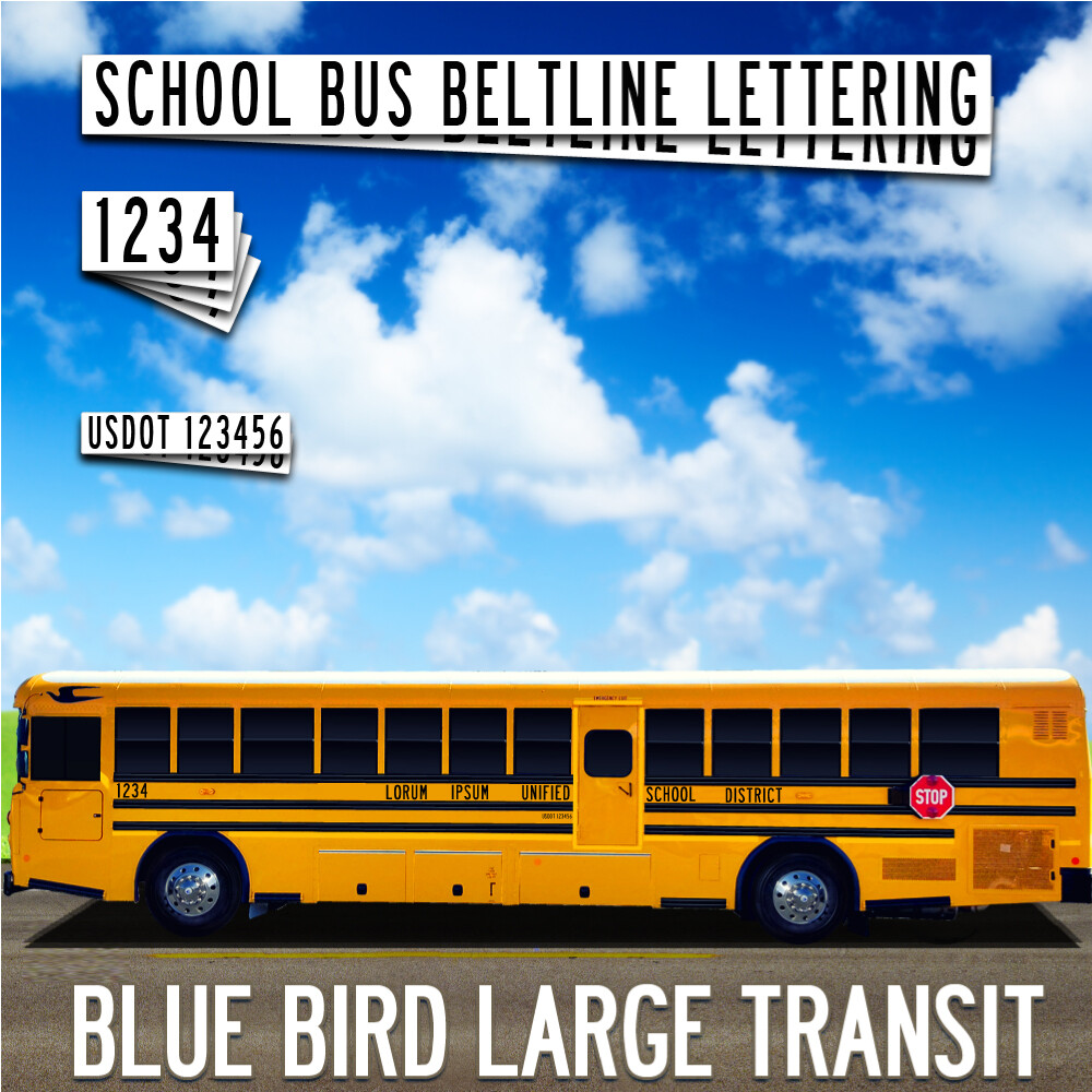 Blue Bird Large Transit Lettering