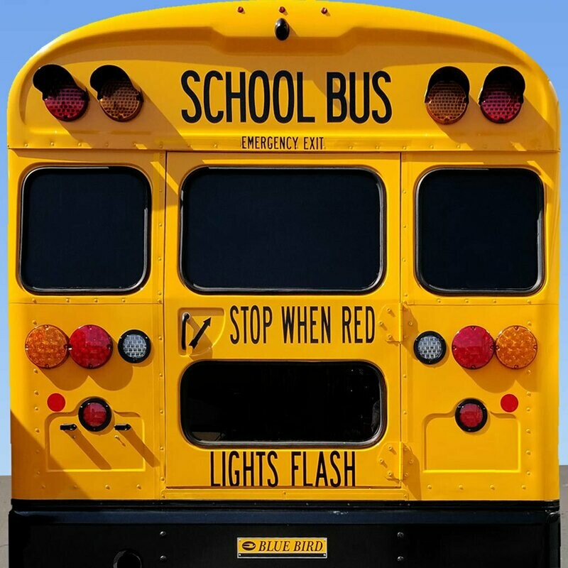Stop When Red Lights Flash - Blue Bird C2