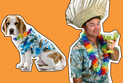 Contest Category: Ruff-n-Runner (Matching Owner & Pet Costume)