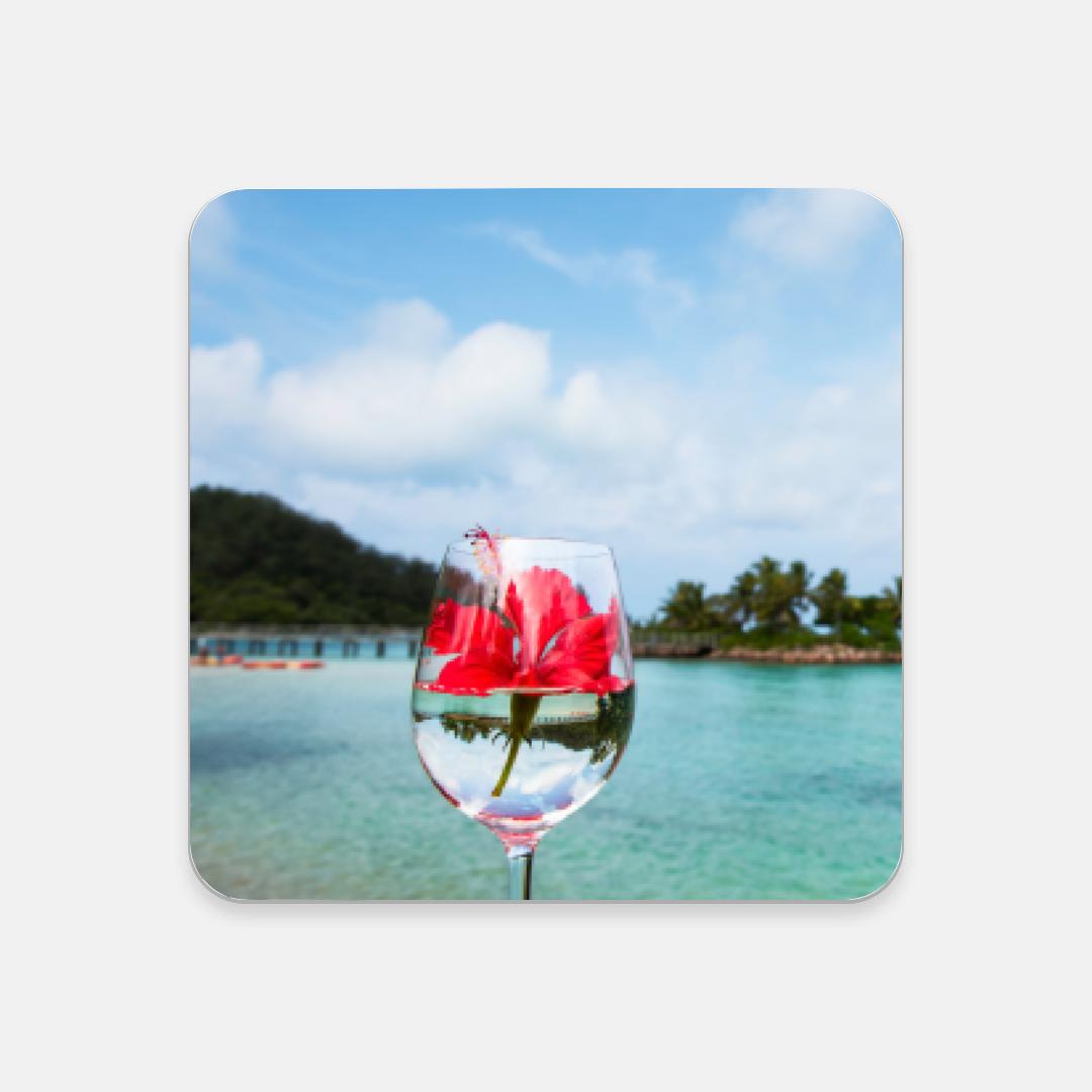 Fiji Island Coaster Set