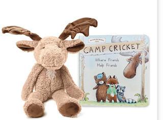 Camp Cricket book set