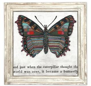 """Butterfly 23"""" x 23"""""""