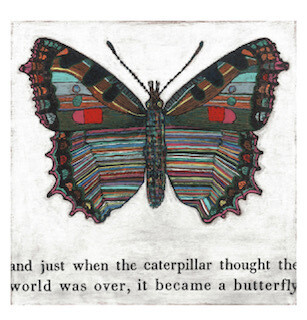 "Butterfly print 12' x12"""