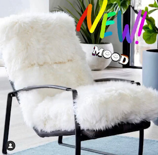 Fuzzy Comfy Chair
