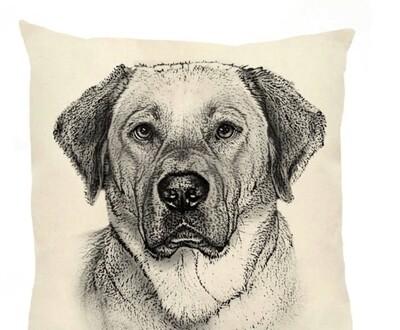 Yellow lab pillow