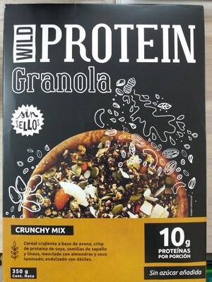 Granola Protein