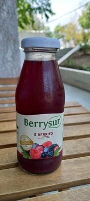 Jugo 5 Berries