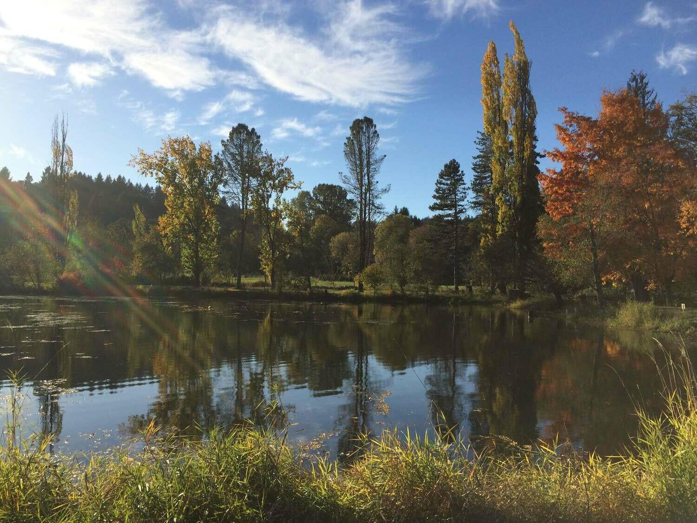 Fall Day Camp #2 September 21st: Soil + Pond Life