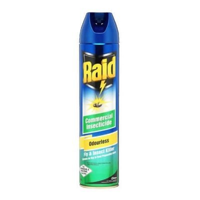 INSECT SPRAY RAID ODOURLESS 400G